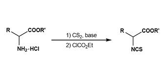 9. Isothiocyanates